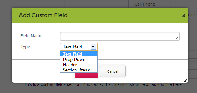 Adding a New Custom Field
