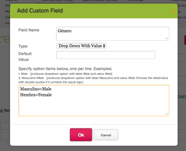 """Drop Down With Value"" Custom Field Type supports Key-Value Pairs"